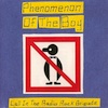 Phenomenon Of The Boy - Call In The Radio Rock Brigade
